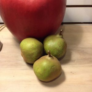 Comice Pear 2 Year Containerized